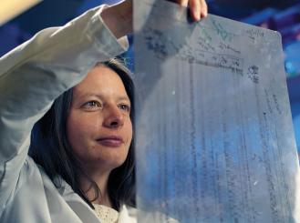 Dr. Kornelia Polyak