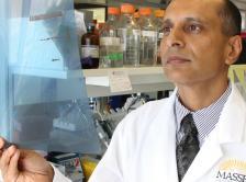 Dr. Sarkar looking at imaging results