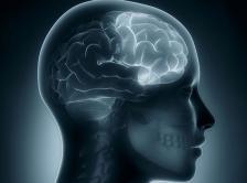 right frontal lobe