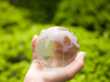 Image of a hand holding a globe